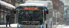 SEAT Bus Snow