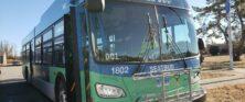 SEAT New Bus